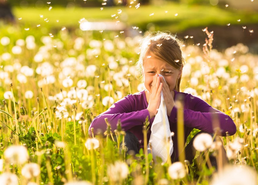 Itchy eyes? It's Hayfever Season!