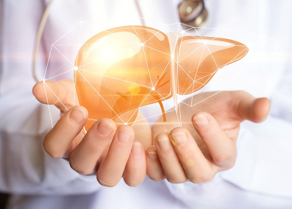 Your Liver Works Hard So Look After It!