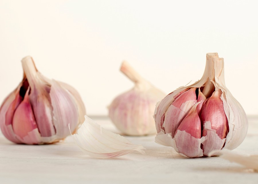 Garlic Is a True Super-Food And Great Support For Winter