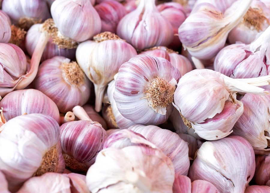 "Garlic Is A True ""Super-food"""